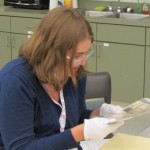 Susanna Sigler examines documents relating to the 83rd Infantry Division.
