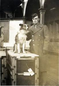 Can you see the family resemblance? Here, Good's grandfather Tech. Sgt. Floyd Harmon stands with a newly received war dog donated to Dogs for Defense. Image courtesy of Linda (Lindy) Harmon Good, in memory of Floyd Eugene Harmon, K-9 Corps, Fort Robinson, Nebraska.