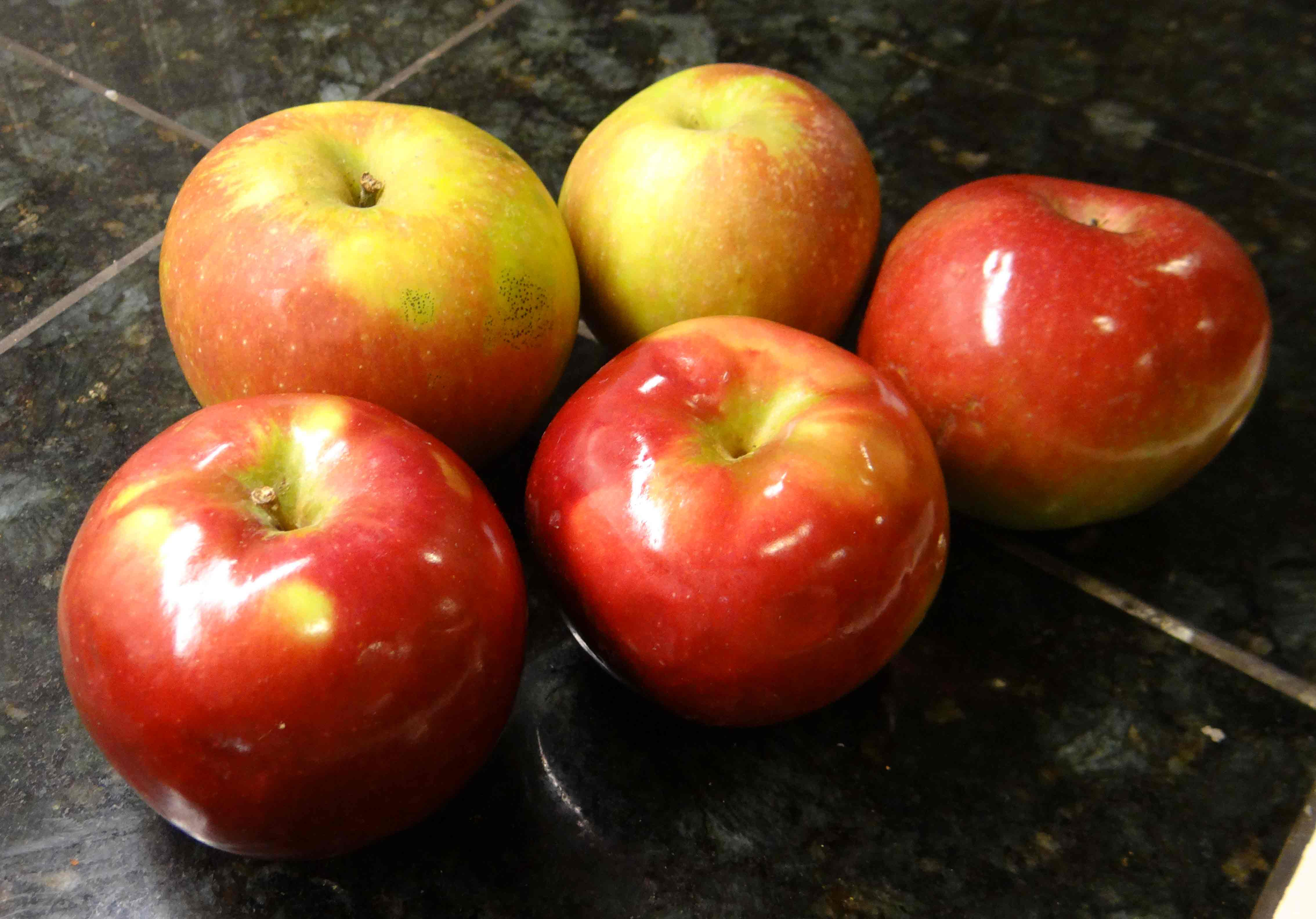 Food To Make With Apples