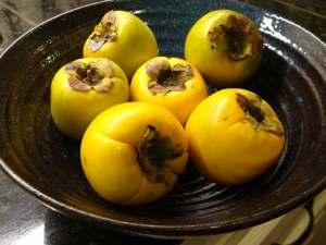 6 persimmons