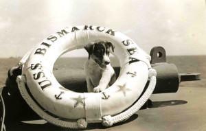 Mascot of the escort carrier USS Baltic Sea